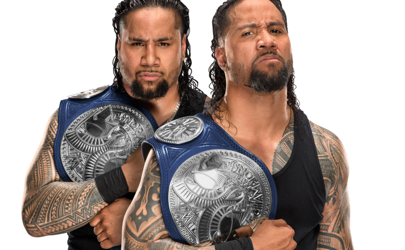 WWE Tag Team of the Year